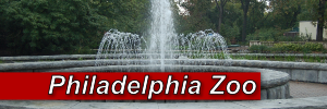 Philadelphia Zoo Project